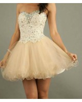 елегантна бална рокля в шампанско 2014